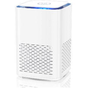 Purificador de aire para hogar con filtro HEPA Duomishu